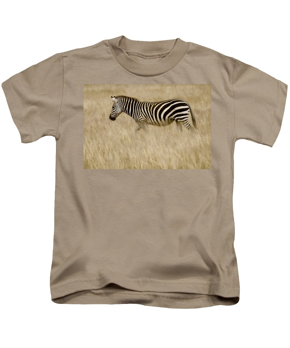 Africa Kids T-Shirt featuring the photograph Zebra In Grasses 2 by Jack Daulton