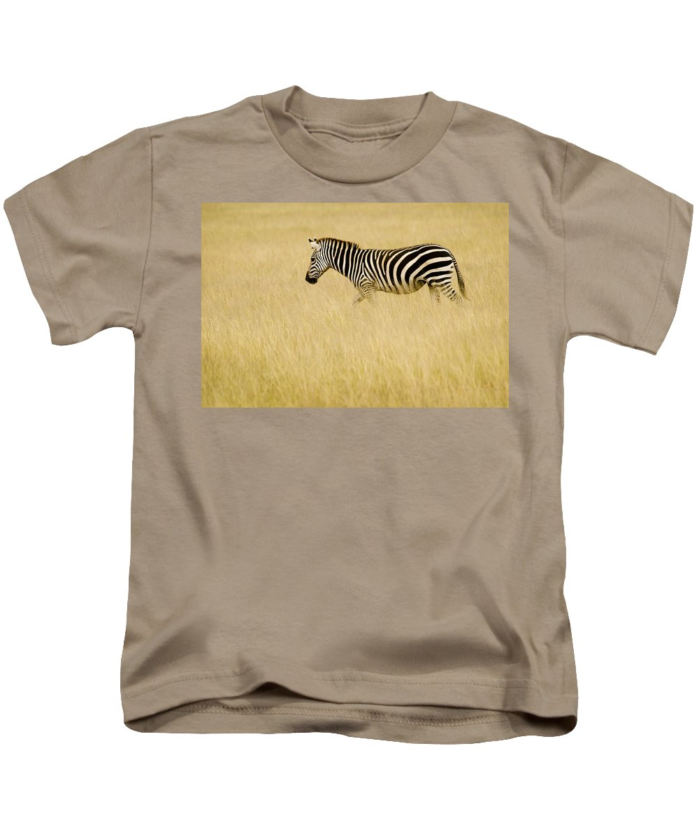 Africa Kids T-Shirt featuring the photograph Zebra In Grasses by Jack Daulton