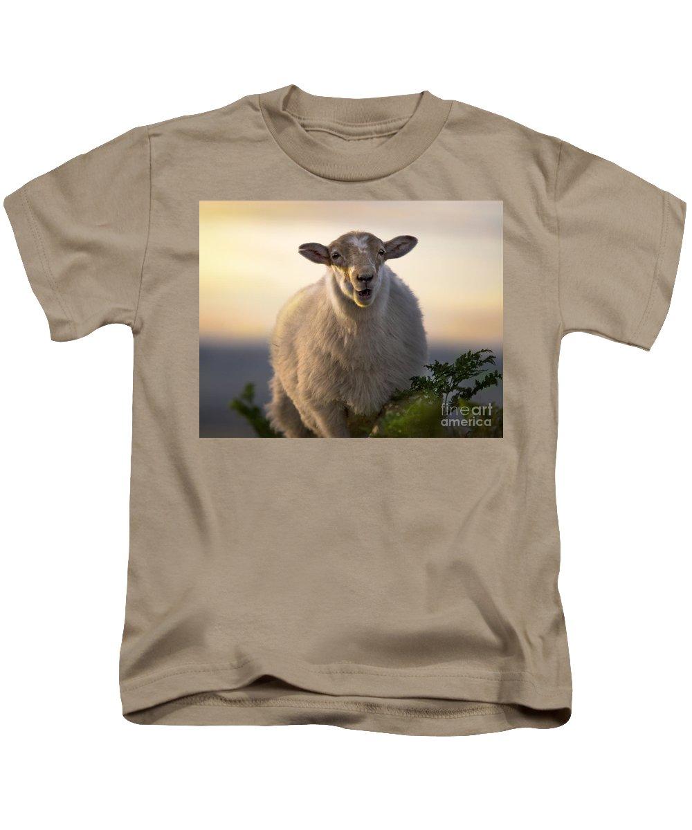 Long Mynd Hill Kids T-Shirt featuring the photograph Baa Baa by Angel Ciesniarska