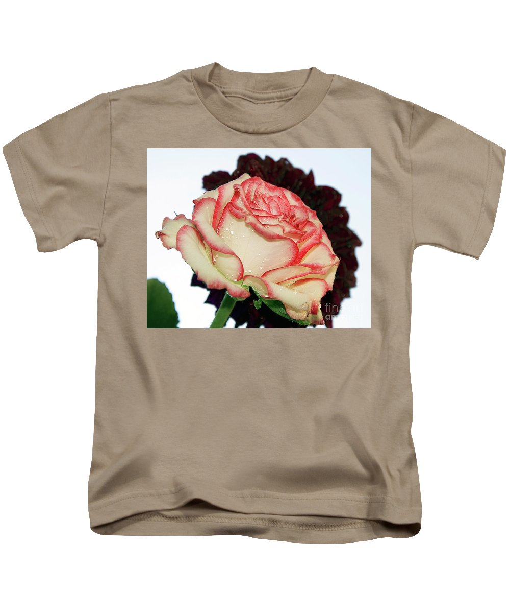 Flowers Kids T-Shirt featuring the photograph Beauty Rose by Elvira Ladocki