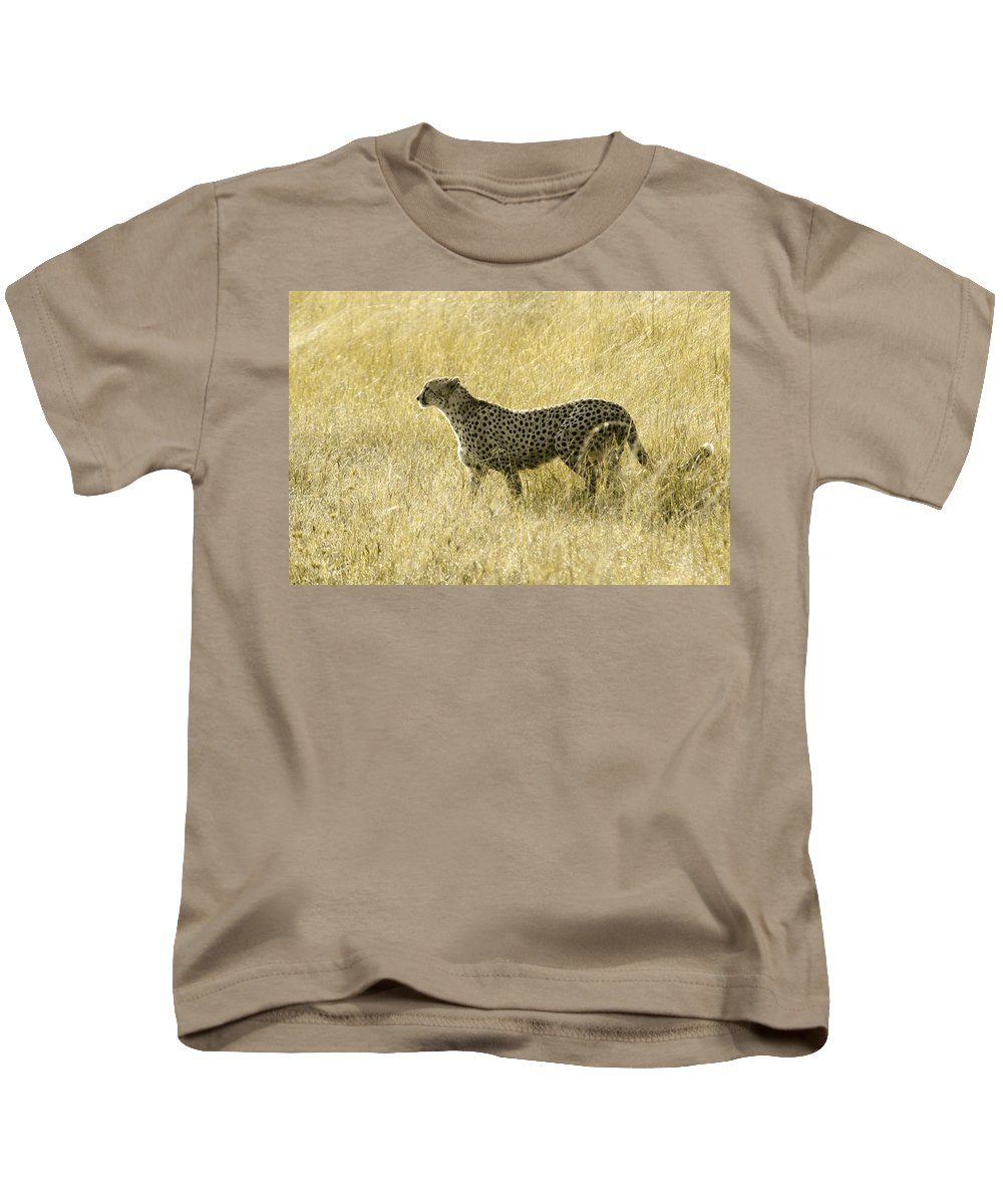Africa Kids T-Shirt featuring the photograph Hunting Cheetah by Michele Burgess