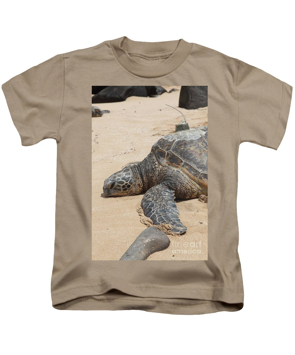 Green Sea Turtle Kids T-Shirt featuring the photograph Green Sea Turtle With Gps by Ted Kinsman