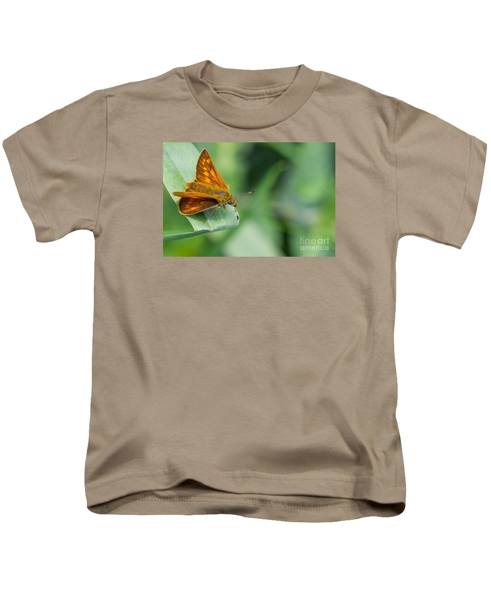 Butterfly Kids T-Shirt featuring the photograph Butterfly by Valerio Poccobelli