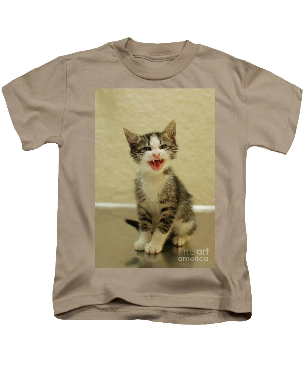 Cat Kids T-Shirt featuring the photograph 3 Day Old Kitten by Amir Paz