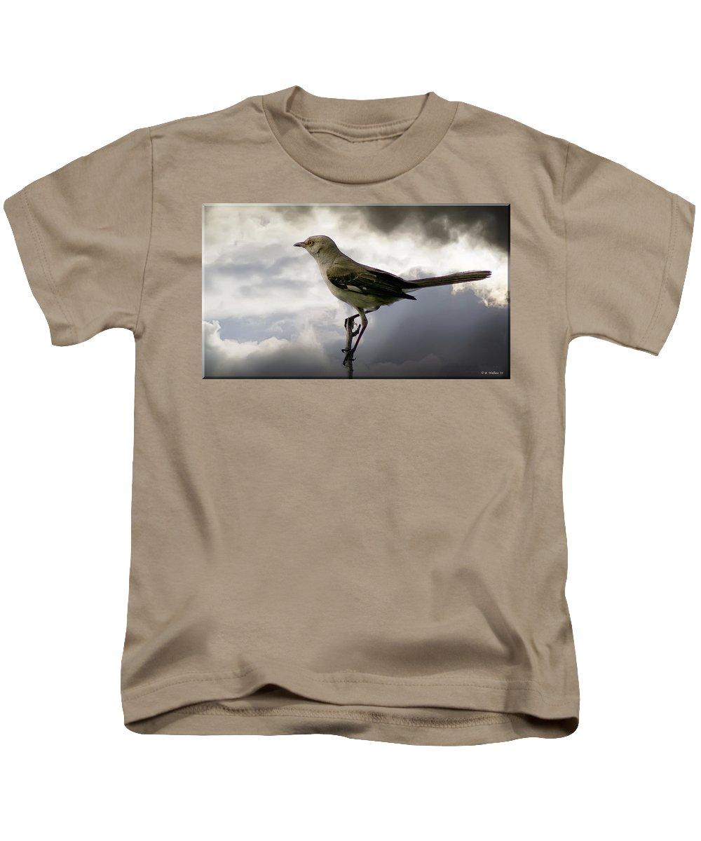 2d Kids T-Shirt featuring the photograph Mockingbird by Brian Wallace