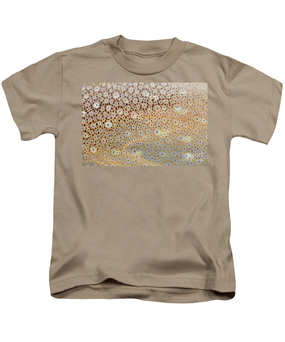 Animal Kids T-Shirt featuring the photograph Squid Skin by Ted Kinsman