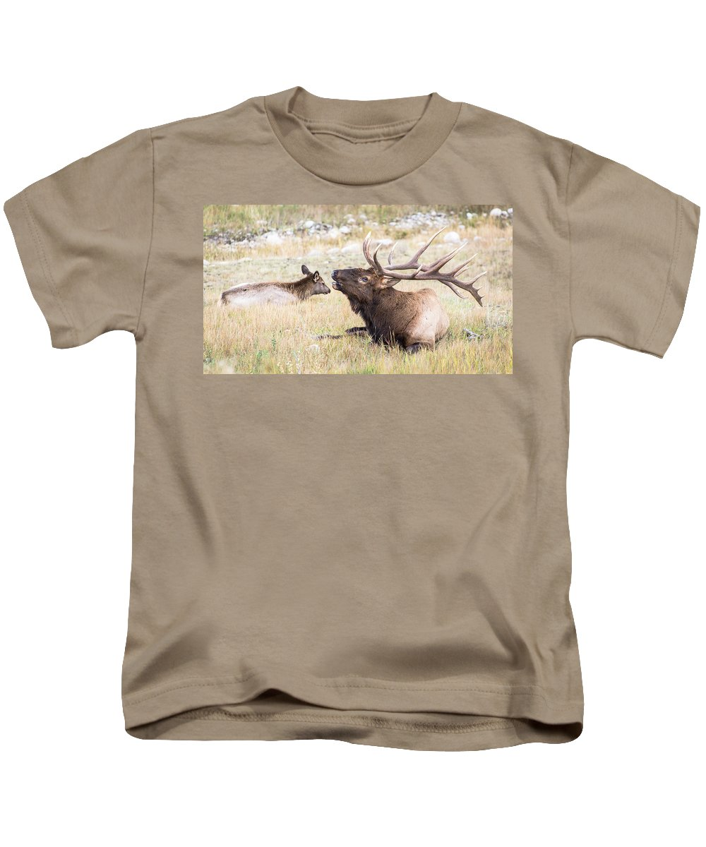 Elk Kids T-Shirt featuring the photograph A Song Of Love by Alex Lapidus