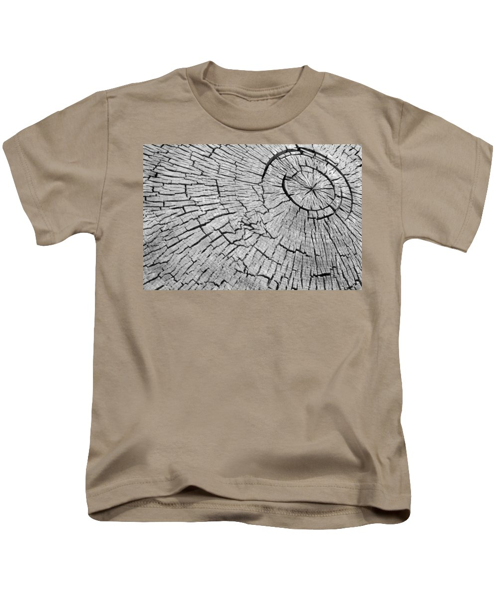 Trees Kids T-Shirt featuring the photograph Abstract Tree Cut by James BO Insogna