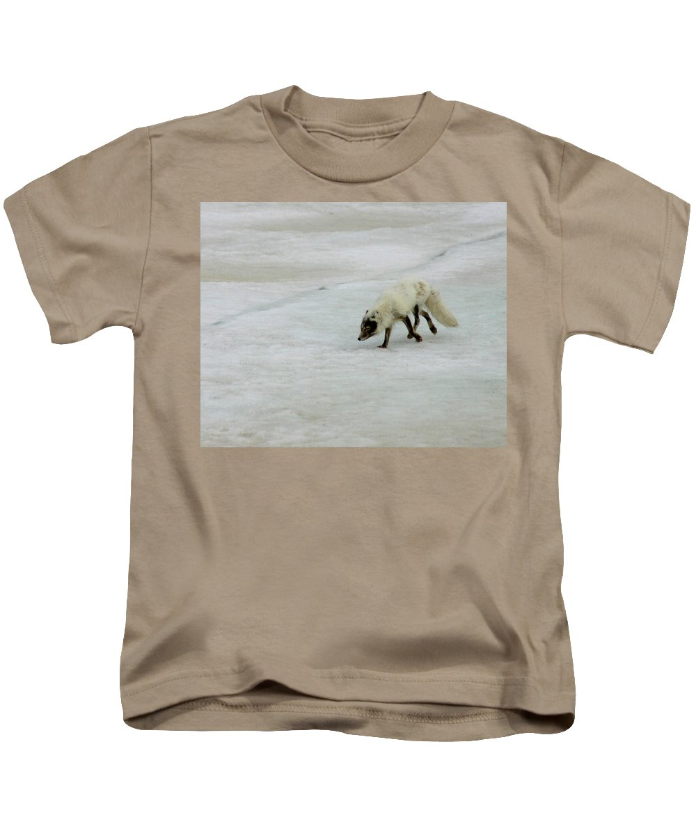 Arctic Fox Kids T-Shirt featuring the photograph Arctic Fox On Ice by Anthony Jones
