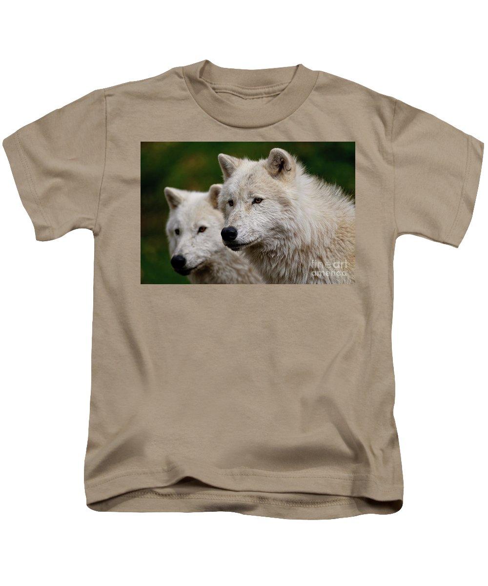 Michael Cummings Kids T-Shirt featuring the photograph Arctic Wolf Pair by Michael Cummings