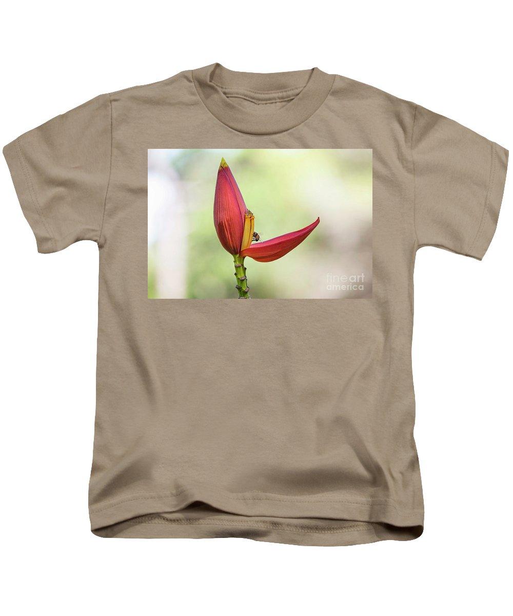 Banana Flower Bud Kids T-Shirt featuring the photograph Banana Flower Bud by Felix Lai