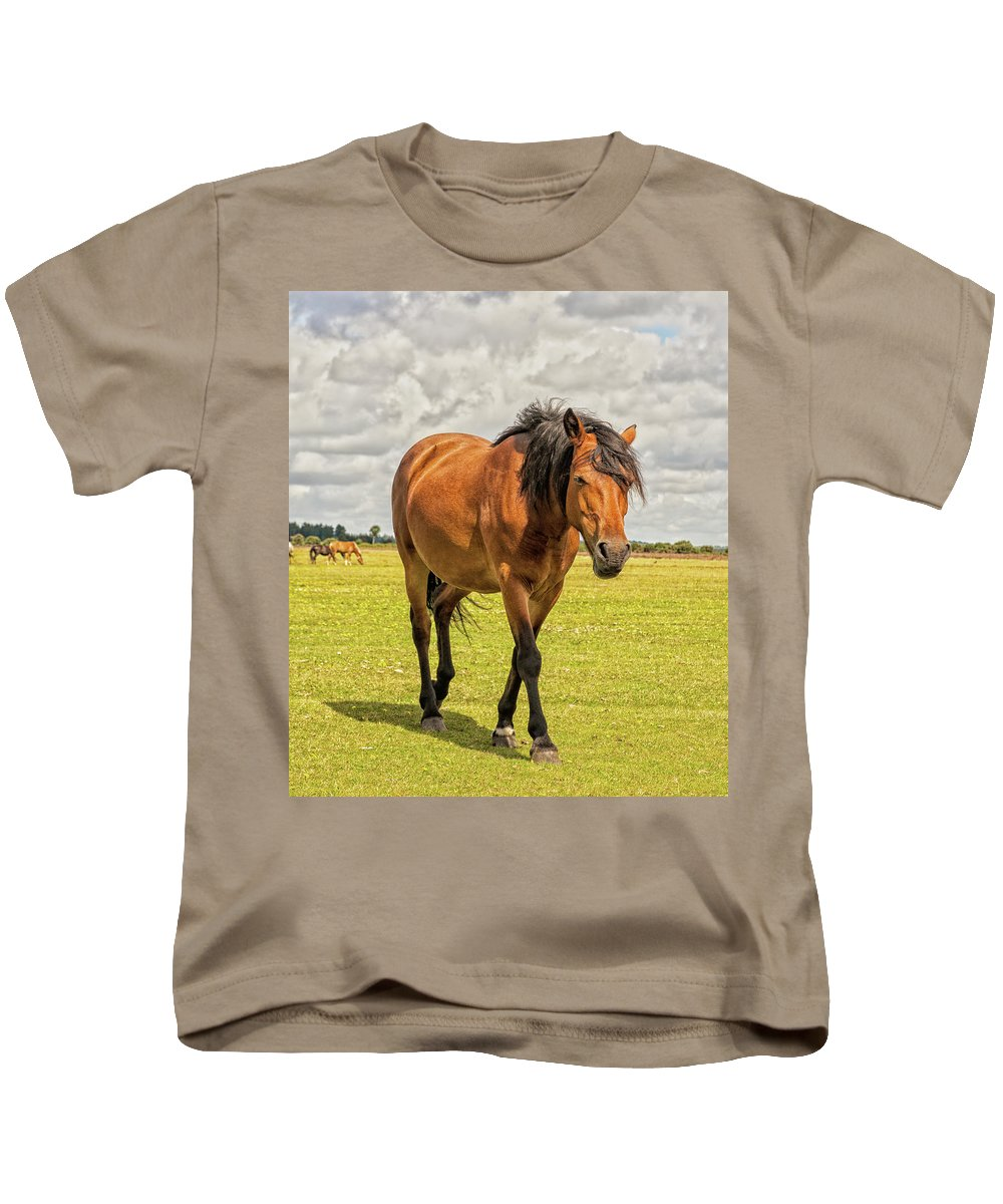 Horse Kids T-Shirt featuring the digital art Bay Pony by Habile Photography