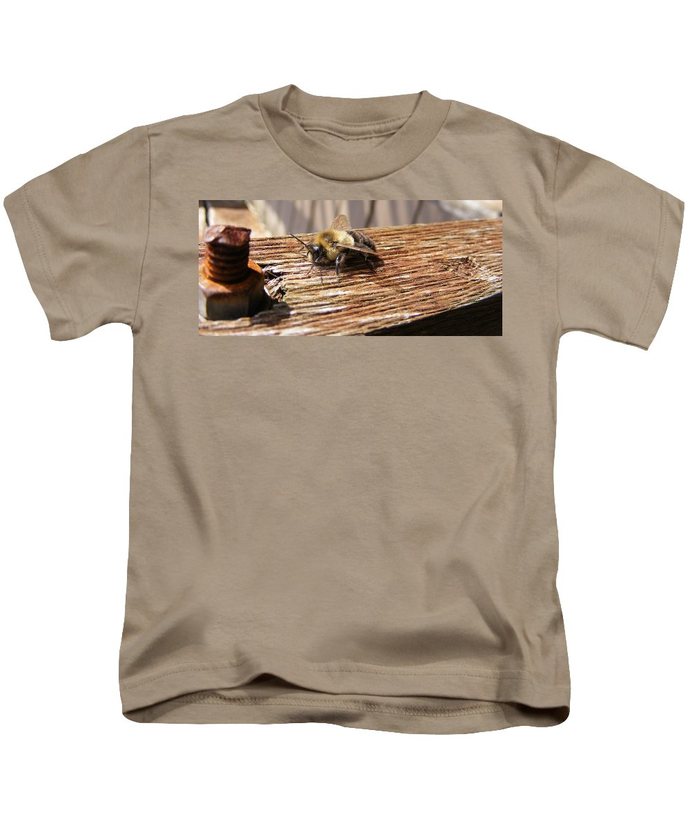 Bee Kids T-Shirt featuring the photograph Bee-u-tiful by Ed Smith
