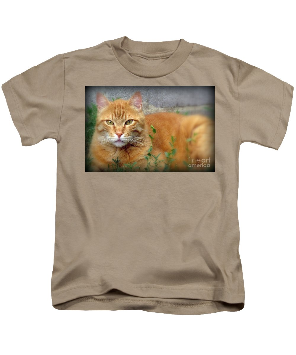 Nacho. The Big Orange Cat. Photographed At Home On June 28th 2016. Kids T-Shirt featuring the photograph Big O by Krista Carofano