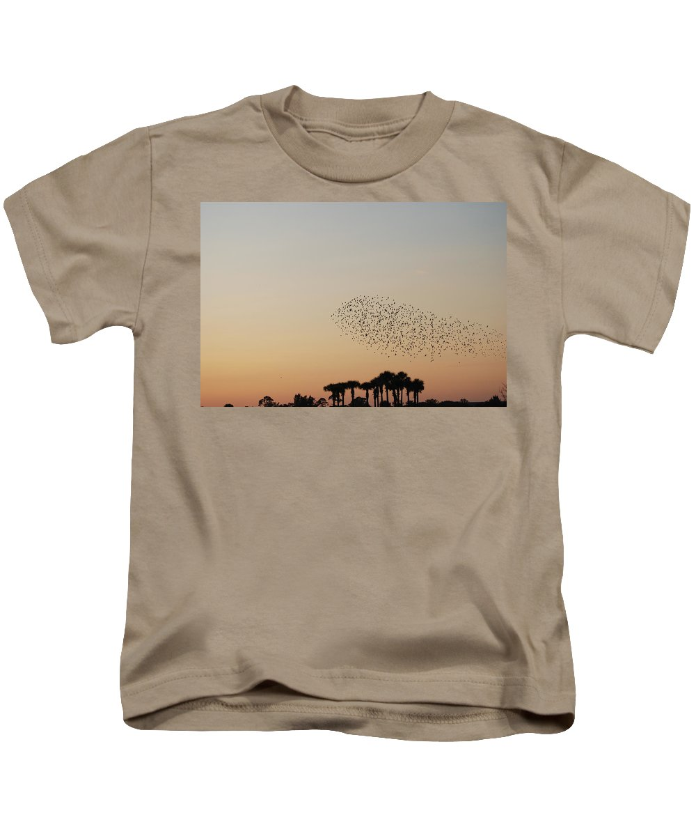 Nature Kids T-Shirt featuring the photograph Birds In The Sun by Rob Hans