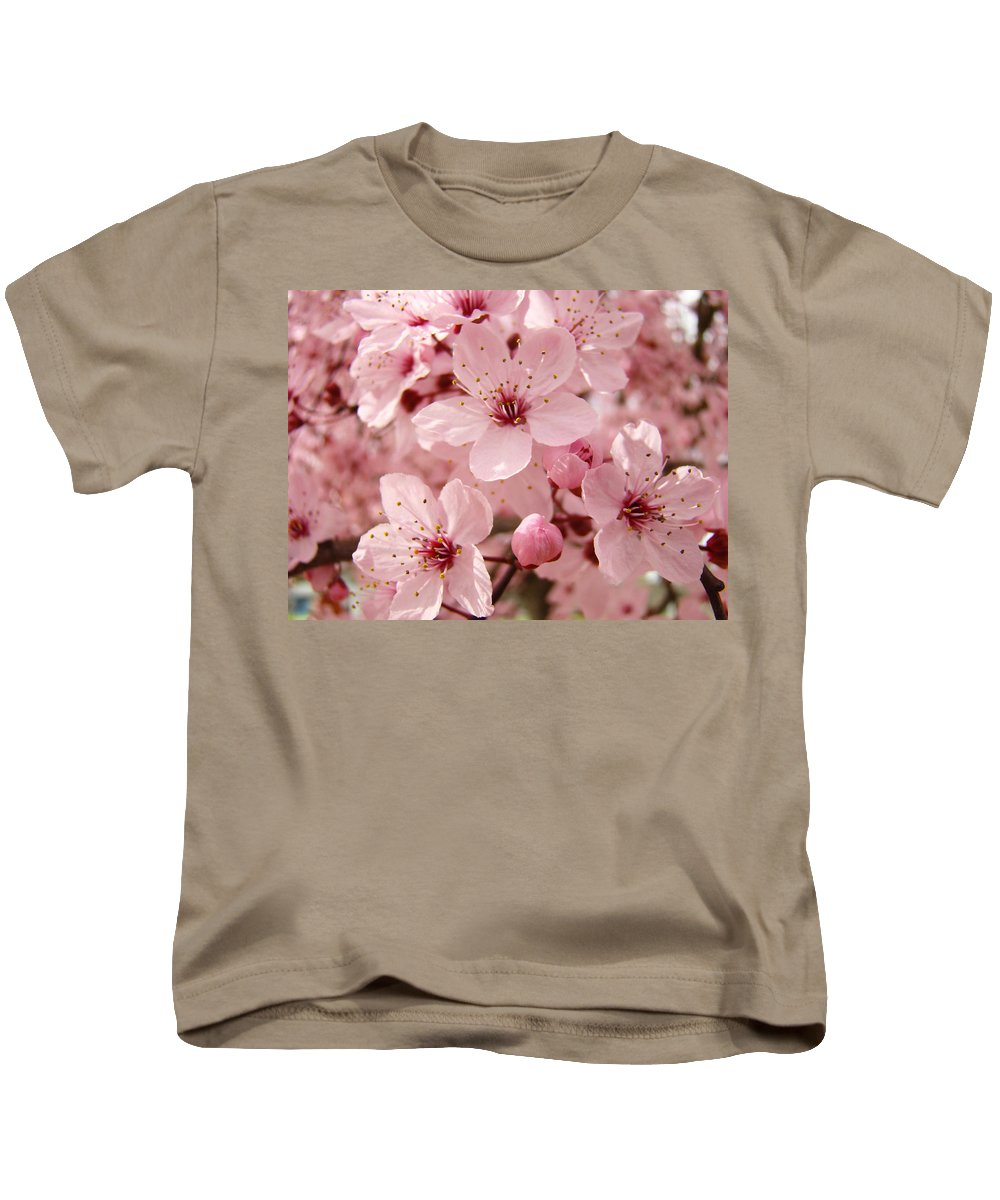 Nature Kids T-Shirt featuring the photograph Blossoms Art Prints 63 Pink Blossoms Spring Tree Blossoms by Baslee Troutman