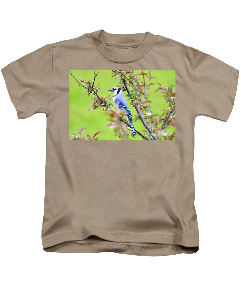 Bird Kids T-Shirt featuring the photograph Blue Jay by Deborah Benoit