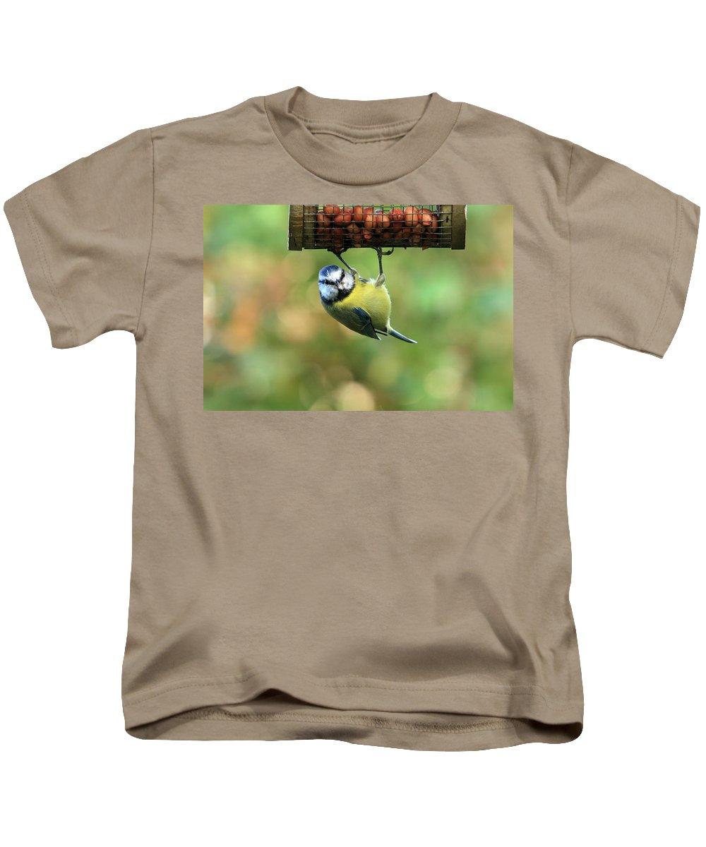Bird Kids T-Shirt featuring the photograph Blue Tit At Garden Feeder by Aidan Moran
