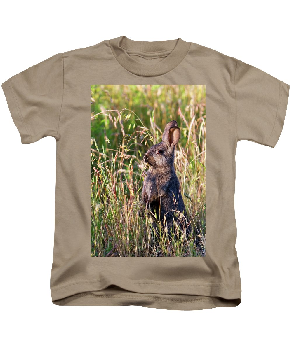 Rabbit Kids T-Shirt featuring the photograph Brown Bunny by Randall Ingalls