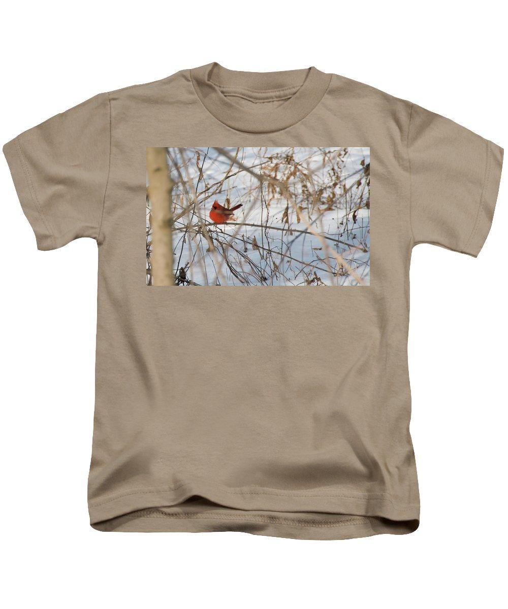 Bird Kids T-Shirt featuring the photograph Cardinal In Winter 2 by David Arment