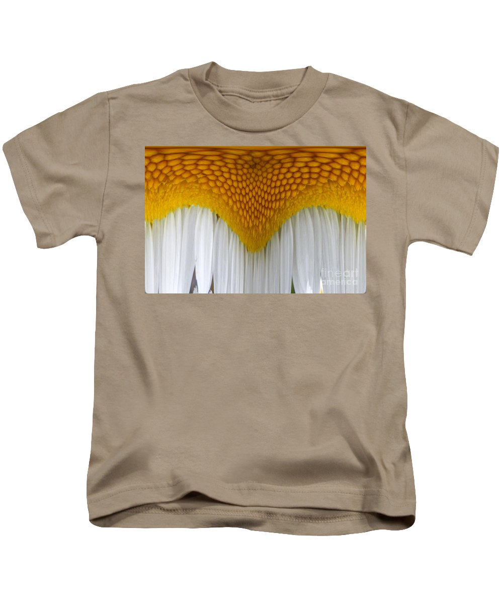 Daisy Kids T-Shirt featuring the digital art Curtain And Valance Daisy by Barbara Griffin