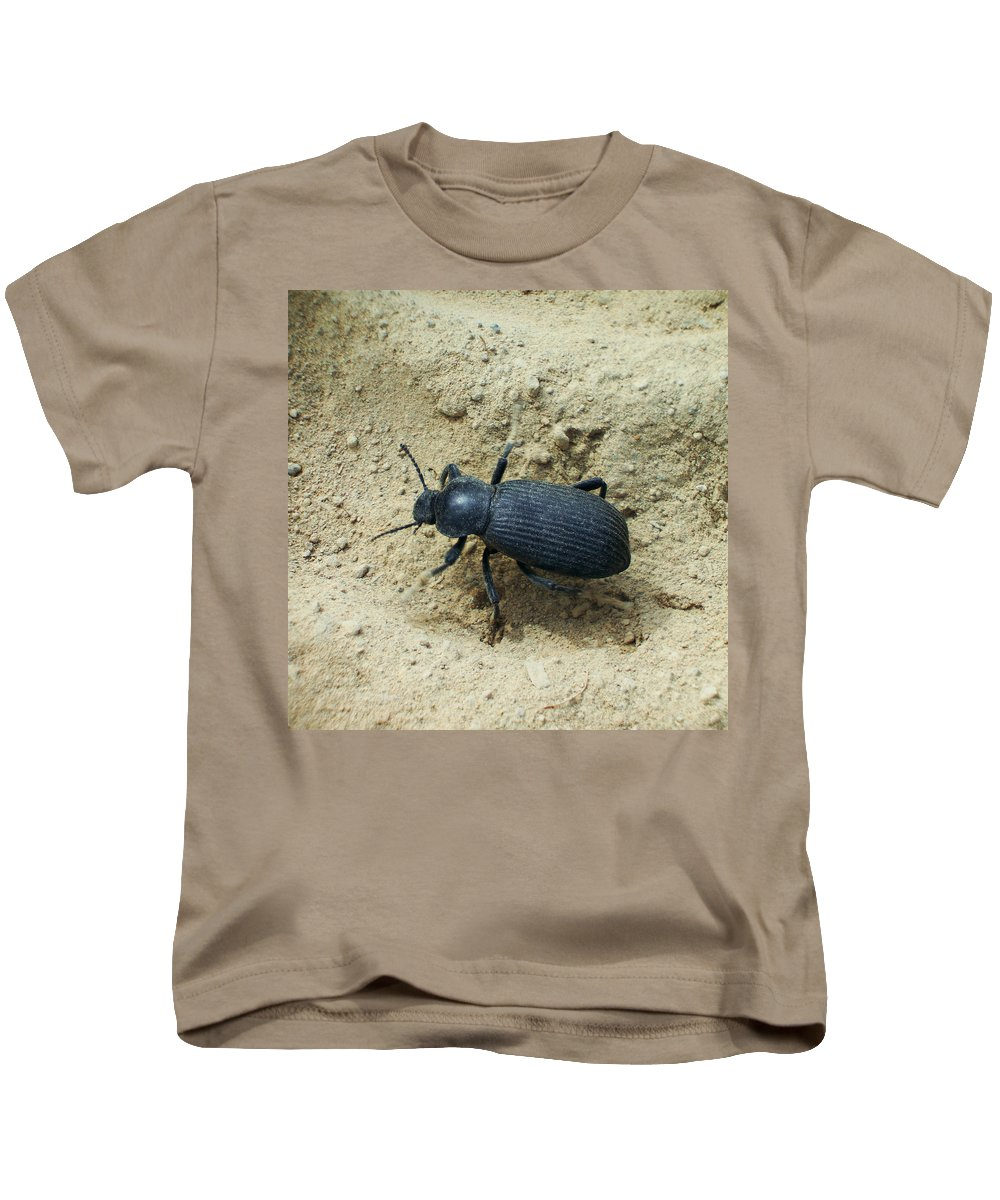 Sand Kids T-Shirt featuring the photograph Darkling Beetle In Sand by Kenneth Willis