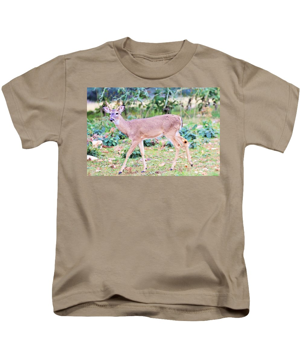Kids T-Shirt featuring the photograph Deer45 by Jeff Downs
