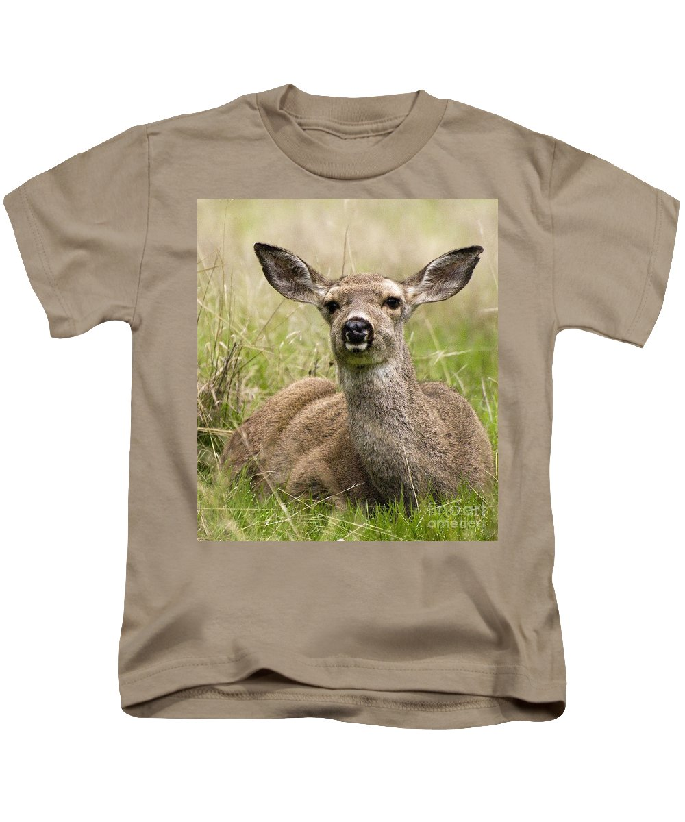 California Scenes Kids T-Shirt featuring the photograph Doe Eyes by Norman Andrus