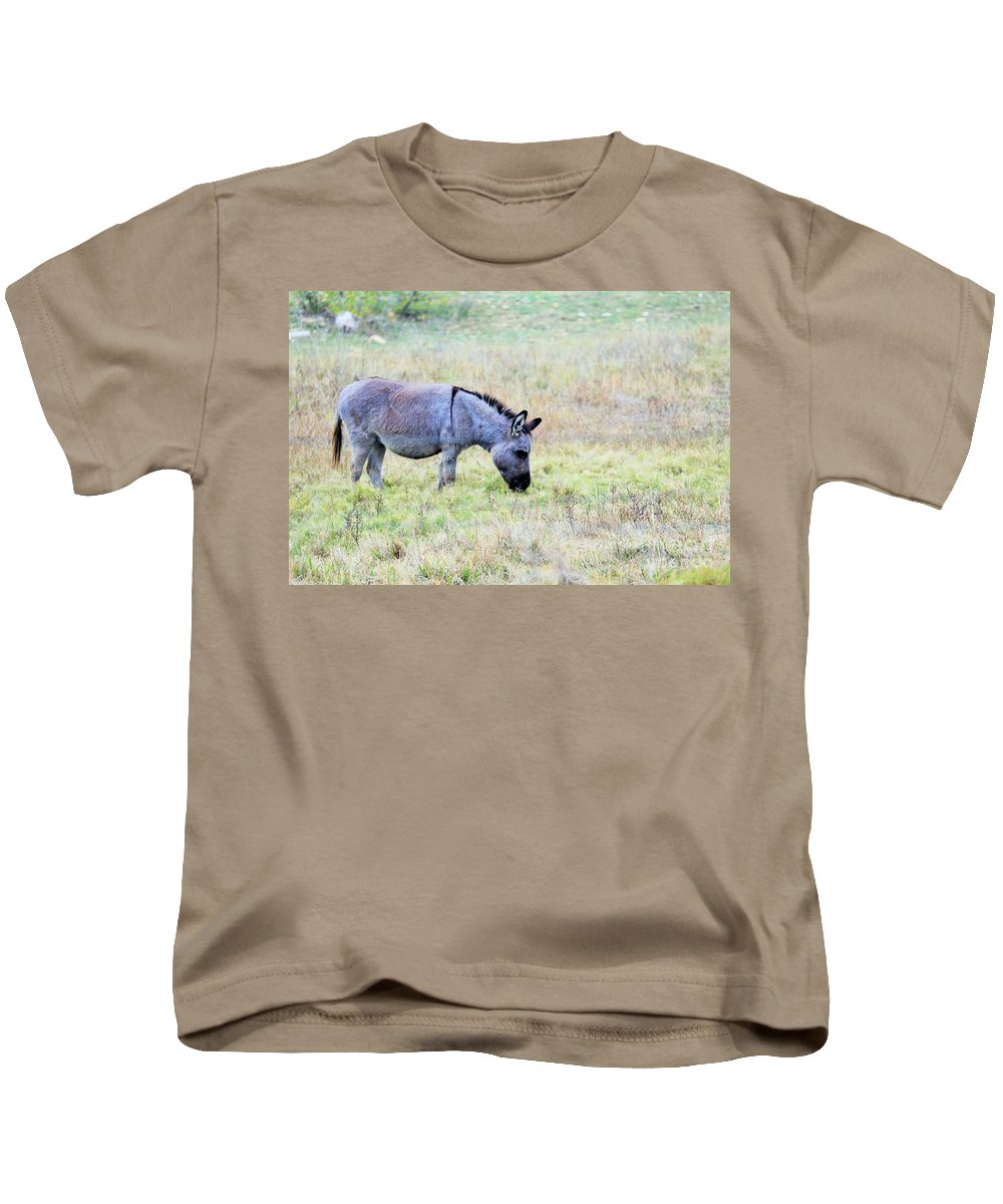 Kids T-Shirt featuring the photograph Donkey 005 by Jeff Downs