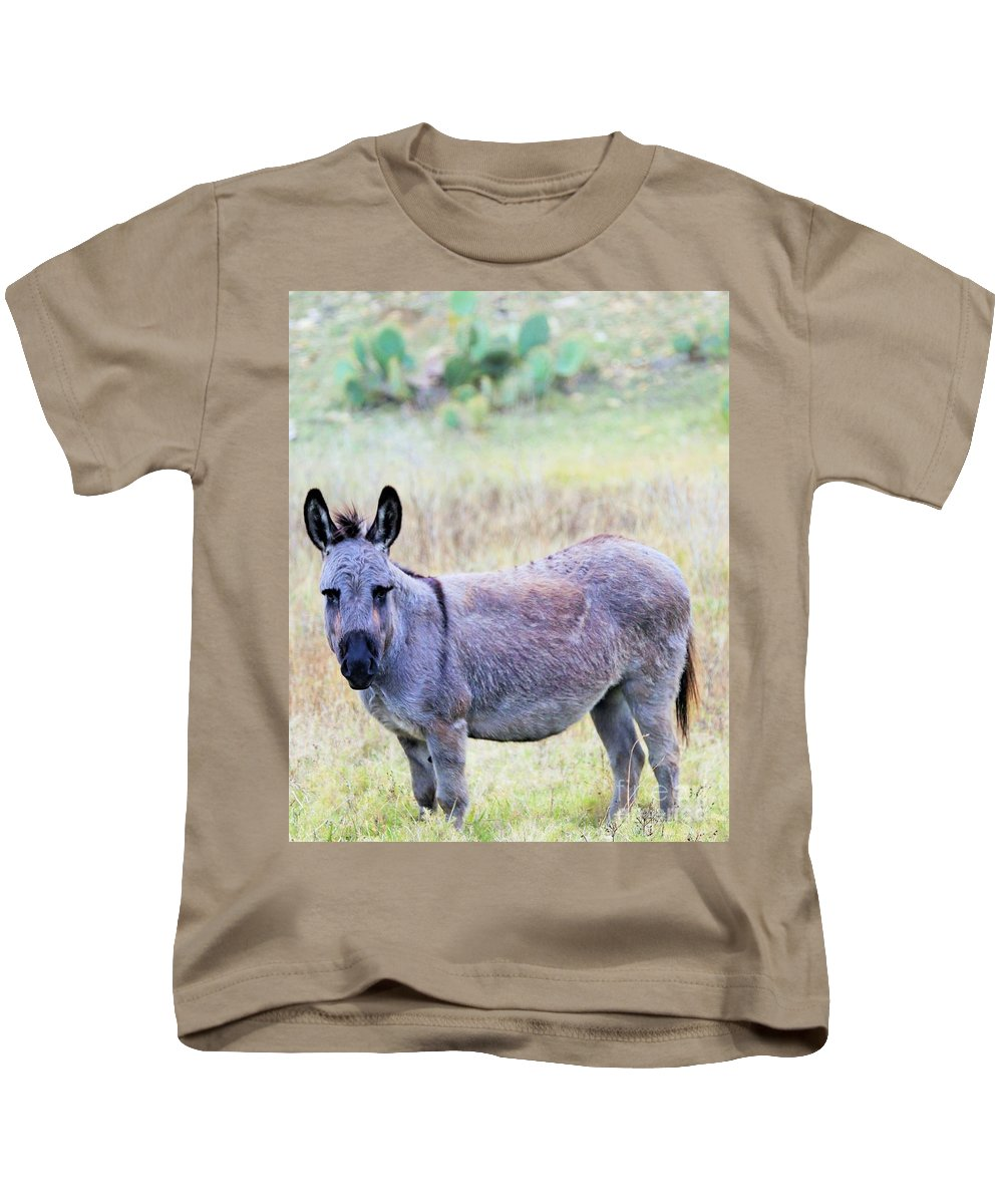 Kids T-Shirt featuring the photograph Donkey 007 by Jeff Downs