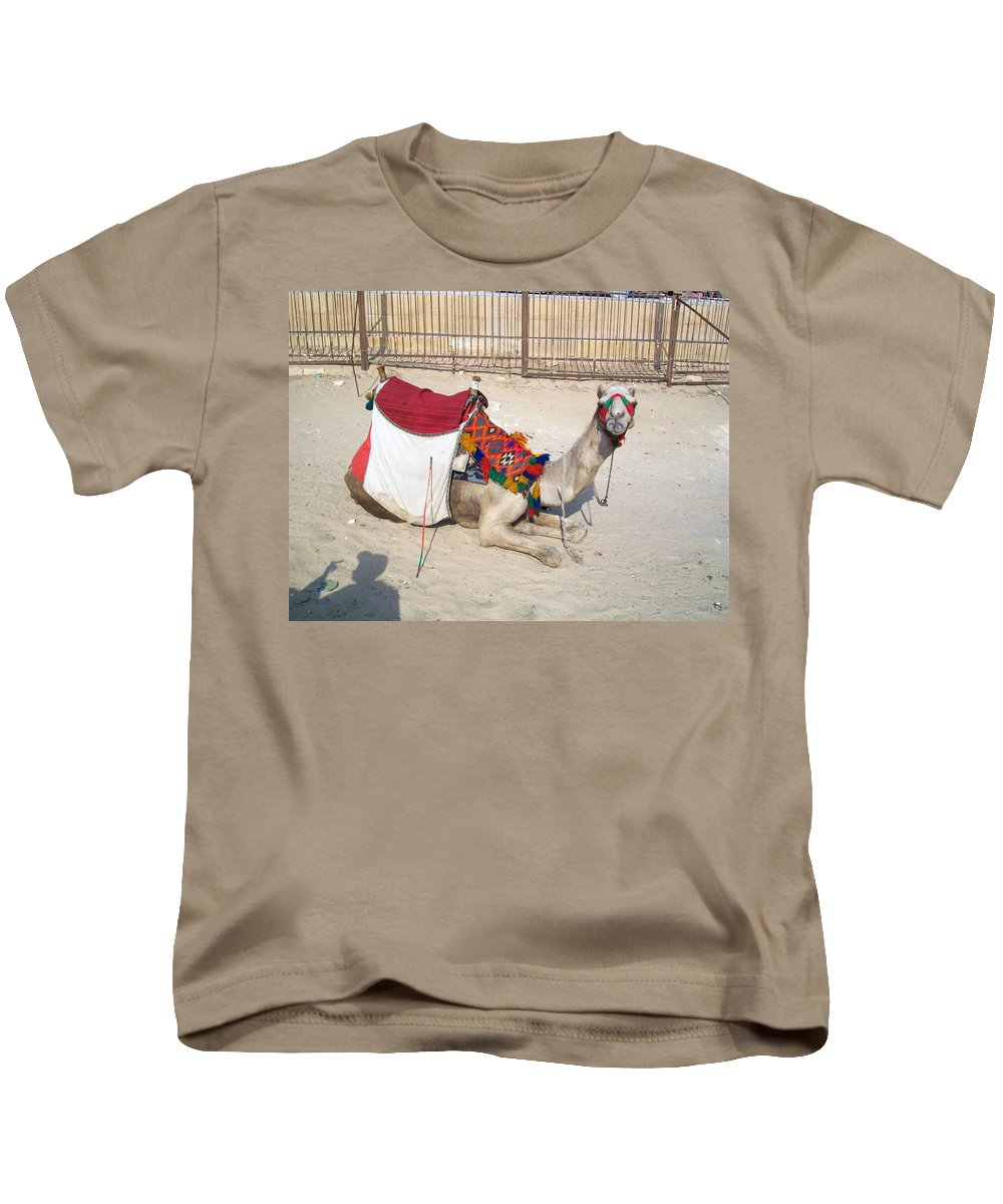 Egypt Kids T-Shirt featuring the photograph Egypt - Camel by Munir Alawi