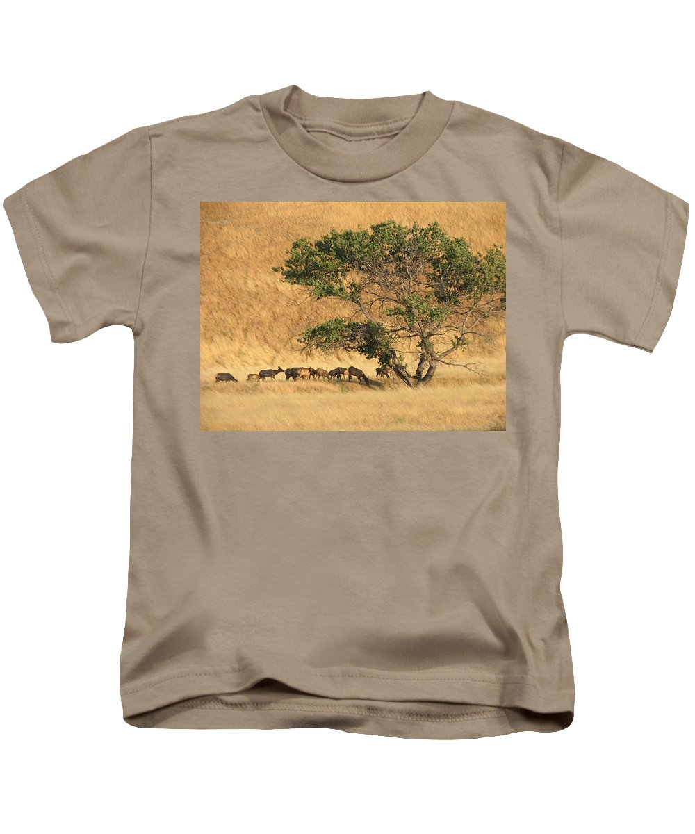 Landscapes Kids T-Shirt featuring the photograph Elk Under Tree by Karen W Meyer