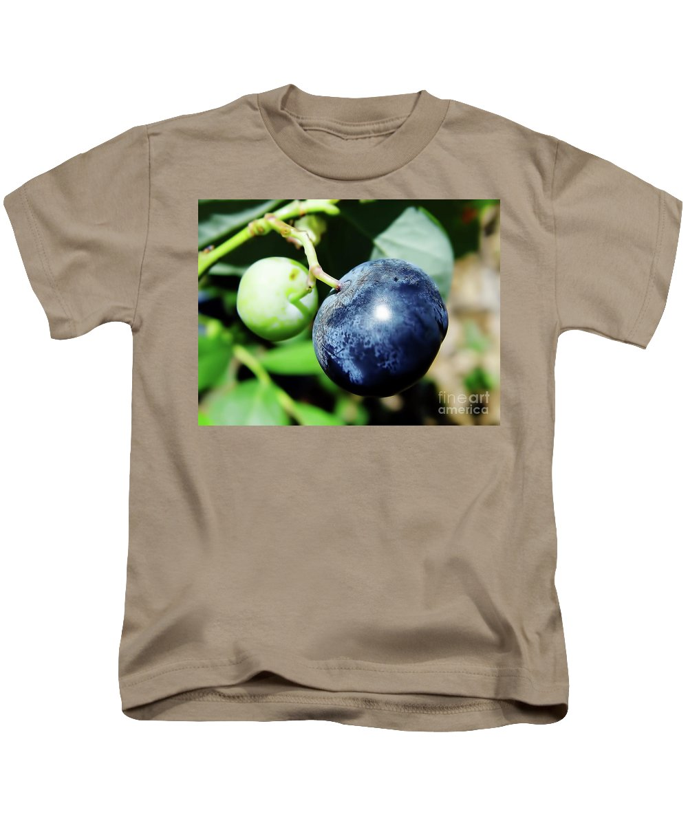 Blue Berries Kids T-Shirt featuring the photograph Florida - Blueberry by D Hackett