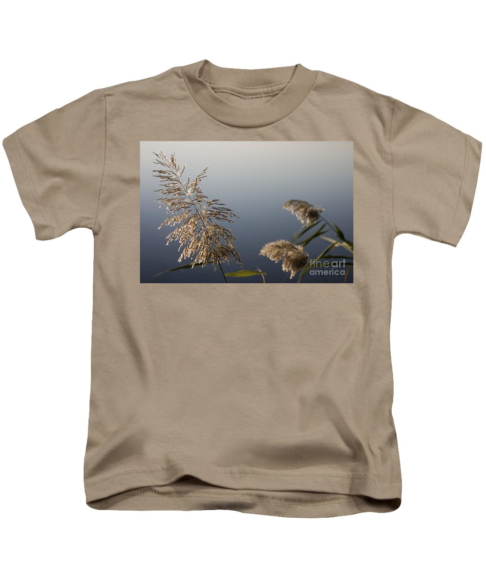 Nature Kids T-Shirt featuring the photograph Flowering Cane Plant by Nahum Budin