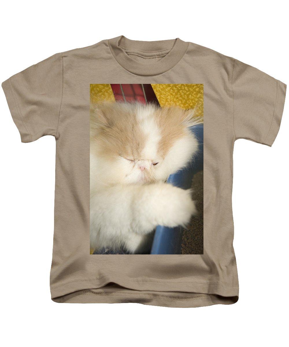 Kitten Kids T-Shirt featuring the photograph Fluffy Kitten by Ian Middleton