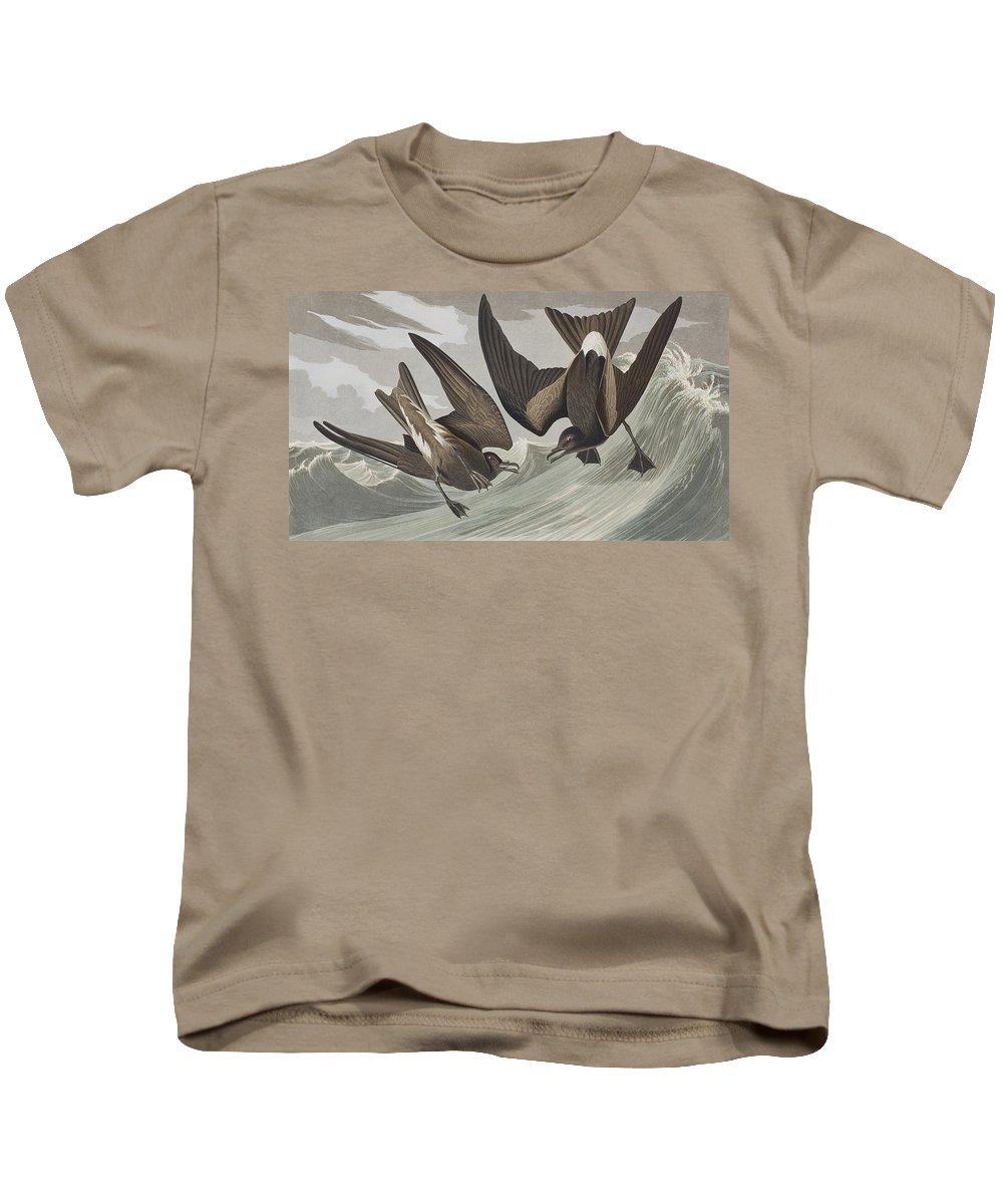Fork-tail Petrel Kids T-Shirt featuring the painting Fork-tail Petrel by John James Audubon