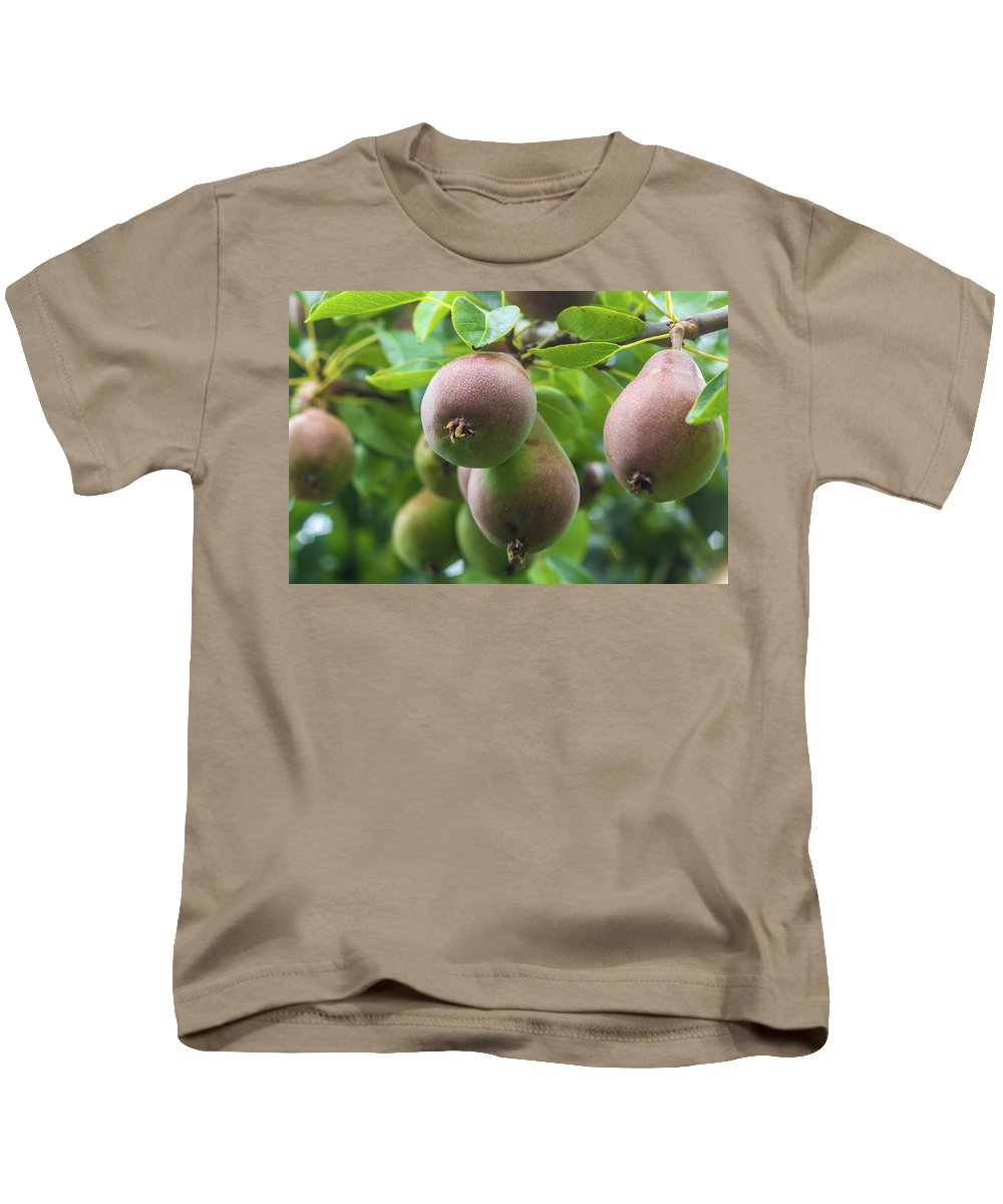European Kids T-Shirt featuring the photograph Fresh Pears by Andrew Balcombe