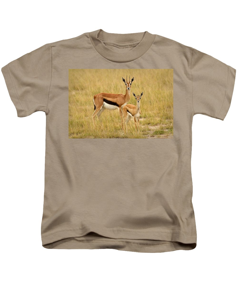 Africa Kids T-Shirt featuring the photograph Gazelle Mother And Child by Jack Daulton