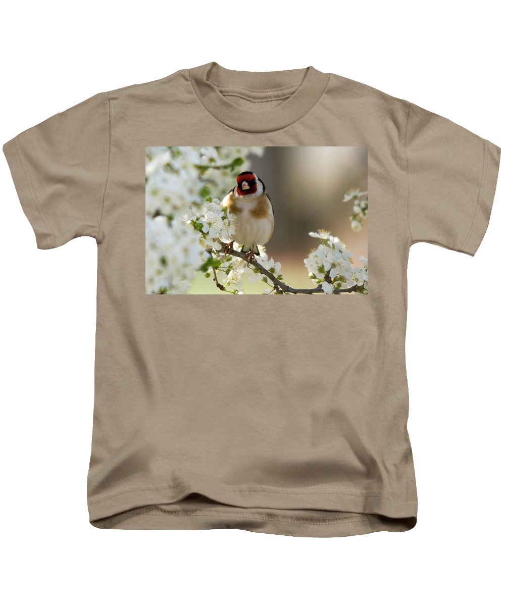 Goldfinch Spring Blossom Kids T-Shirt featuring the photograph Goldfinch Spring Blossom by Cliff Norton