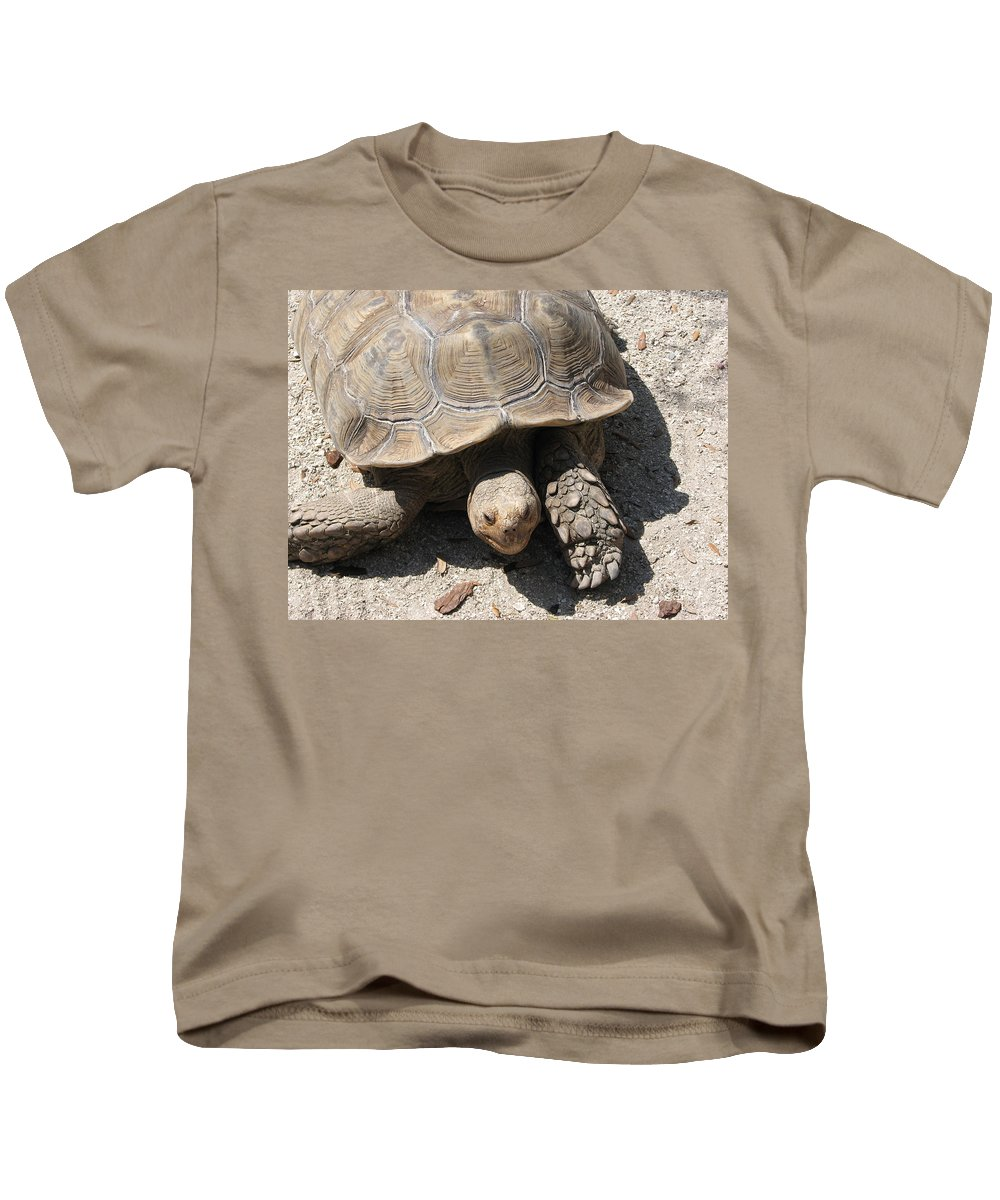 Turtle Kids T-Shirt featuring the photograph Im Moving by Stacey May