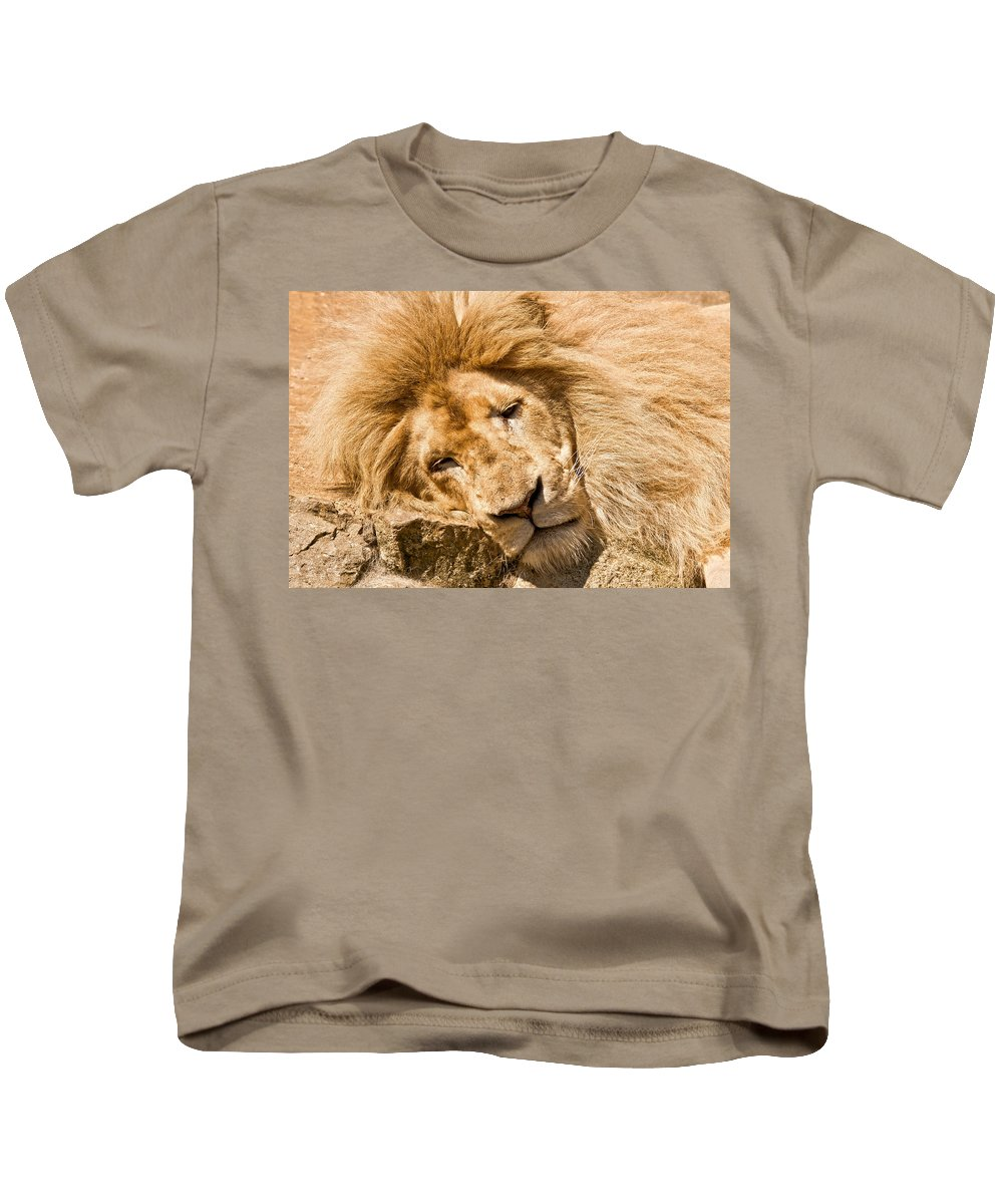 Lion Kids T-Shirt featuring the photograph Im Sleeping by Scott Carruthers