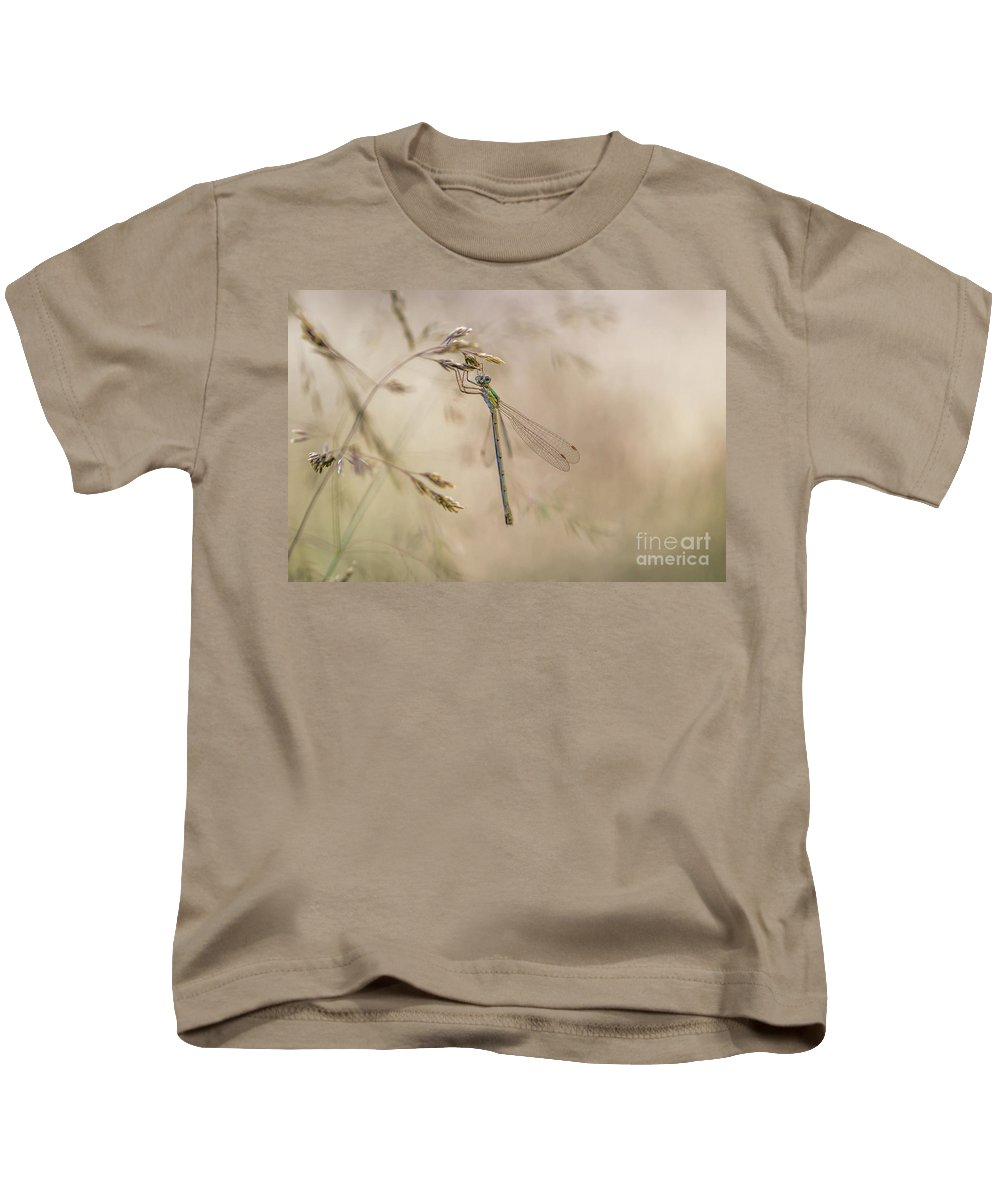 Damselflie Kids T-Shirt featuring the photograph In The Small World by Rikard Strand