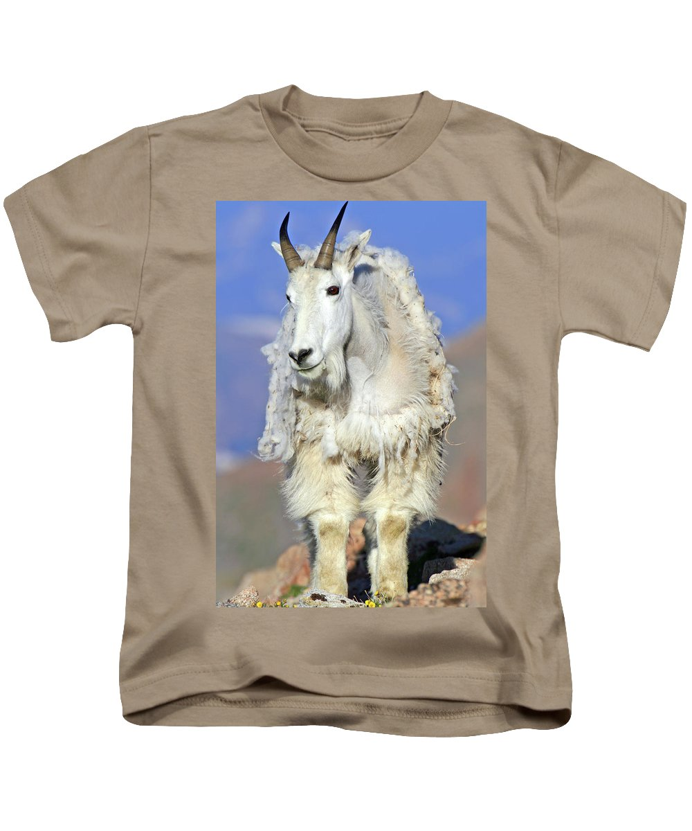 Goat Kids T-Shirt featuring the photograph King Of The Mountain by Scott Mahon