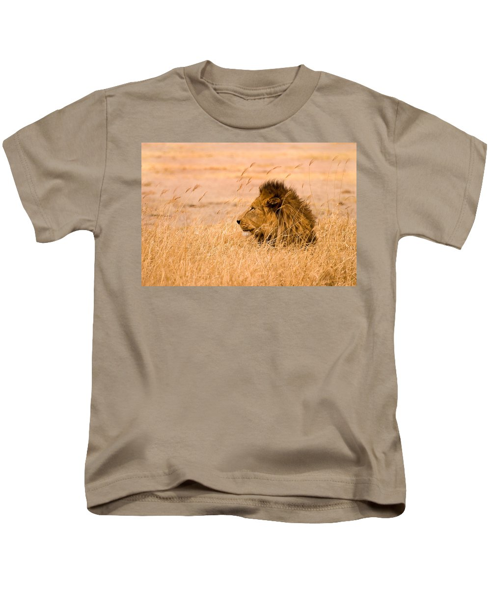 3scape Kids T-Shirt featuring the photograph King Of The Pride by Adam Romanowicz