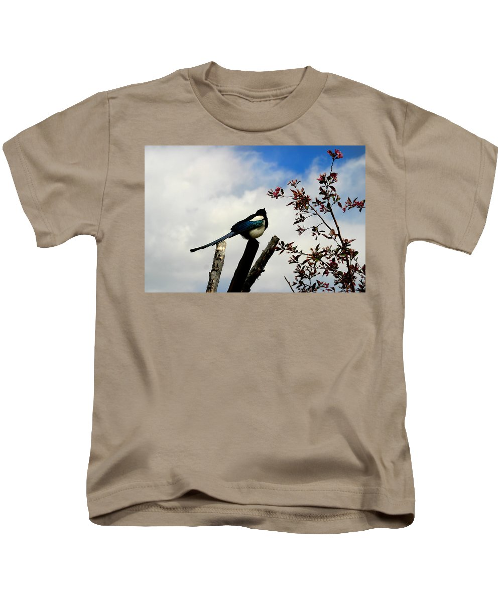 Magpie Kids T-Shirt featuring the photograph Magpie by Anthony Jones