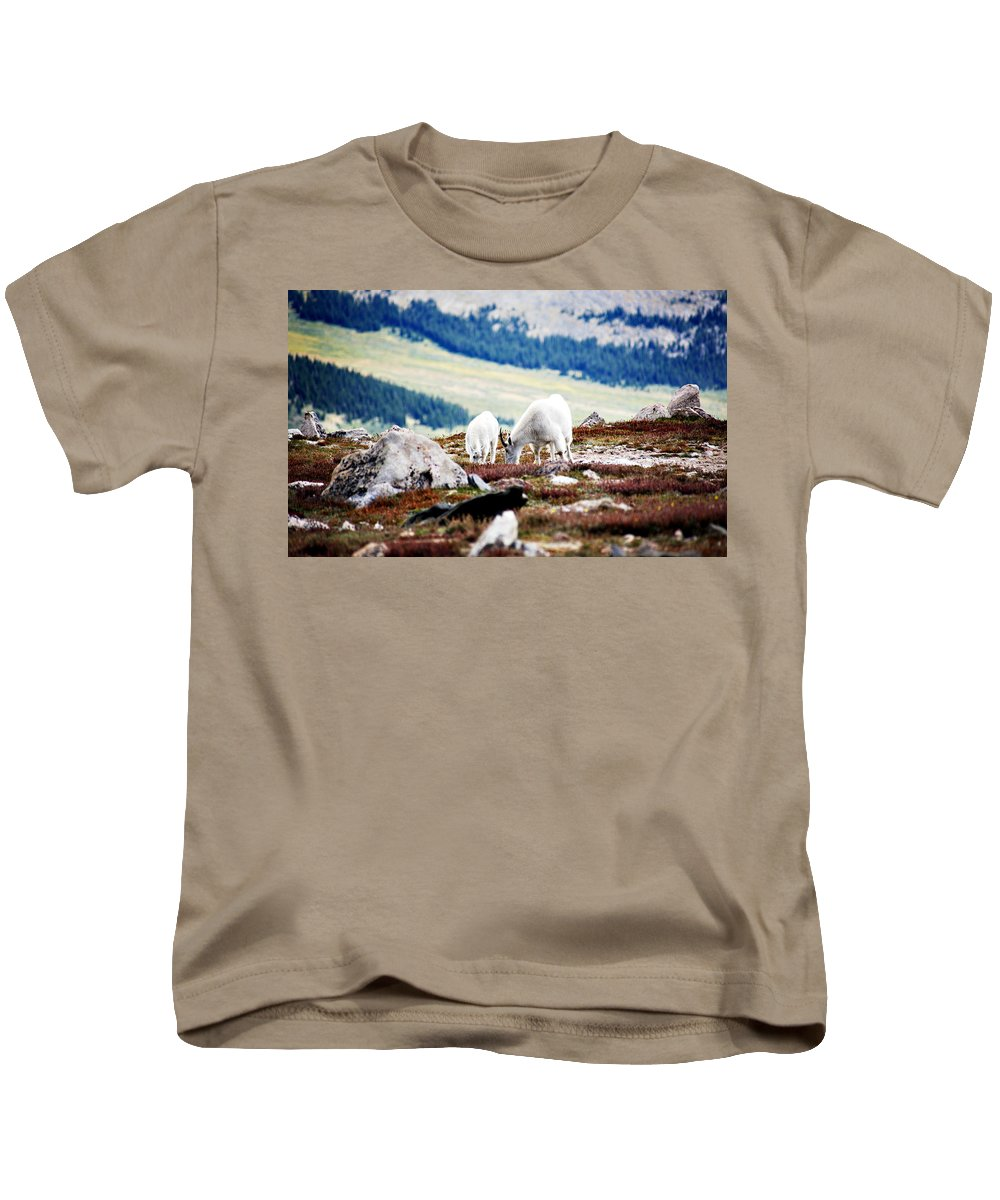Animal Kids T-Shirt featuring the photograph Mountain Goats 2 by Marilyn Hunt
