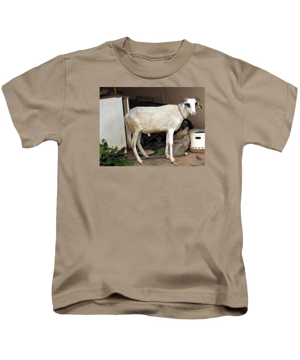Ram Kids T-Shirt featuring the photograph My Ram by Amy Hosp