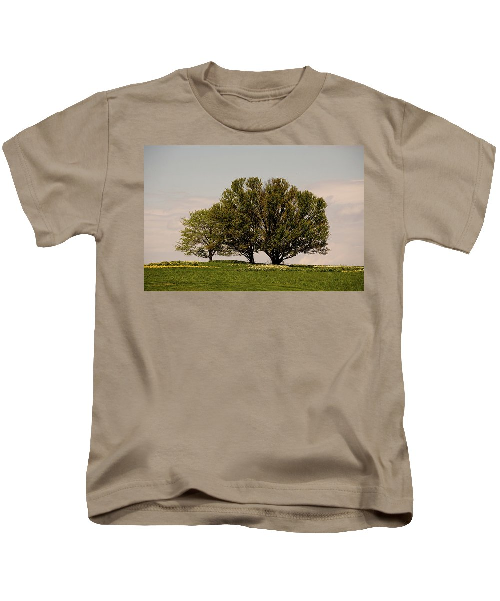 Tree Kids T-Shirt featuring the photograph Picnic Time by Trish Tritz