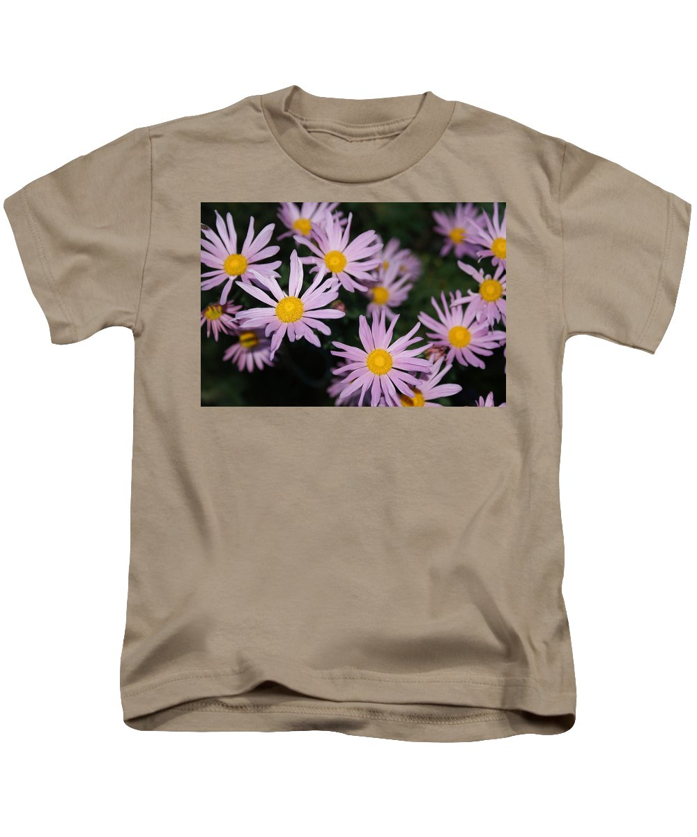 Usa Kids T-Shirt featuring the photograph Pink Clara Curtis Daisy Chrysanthemum by Holly Eads