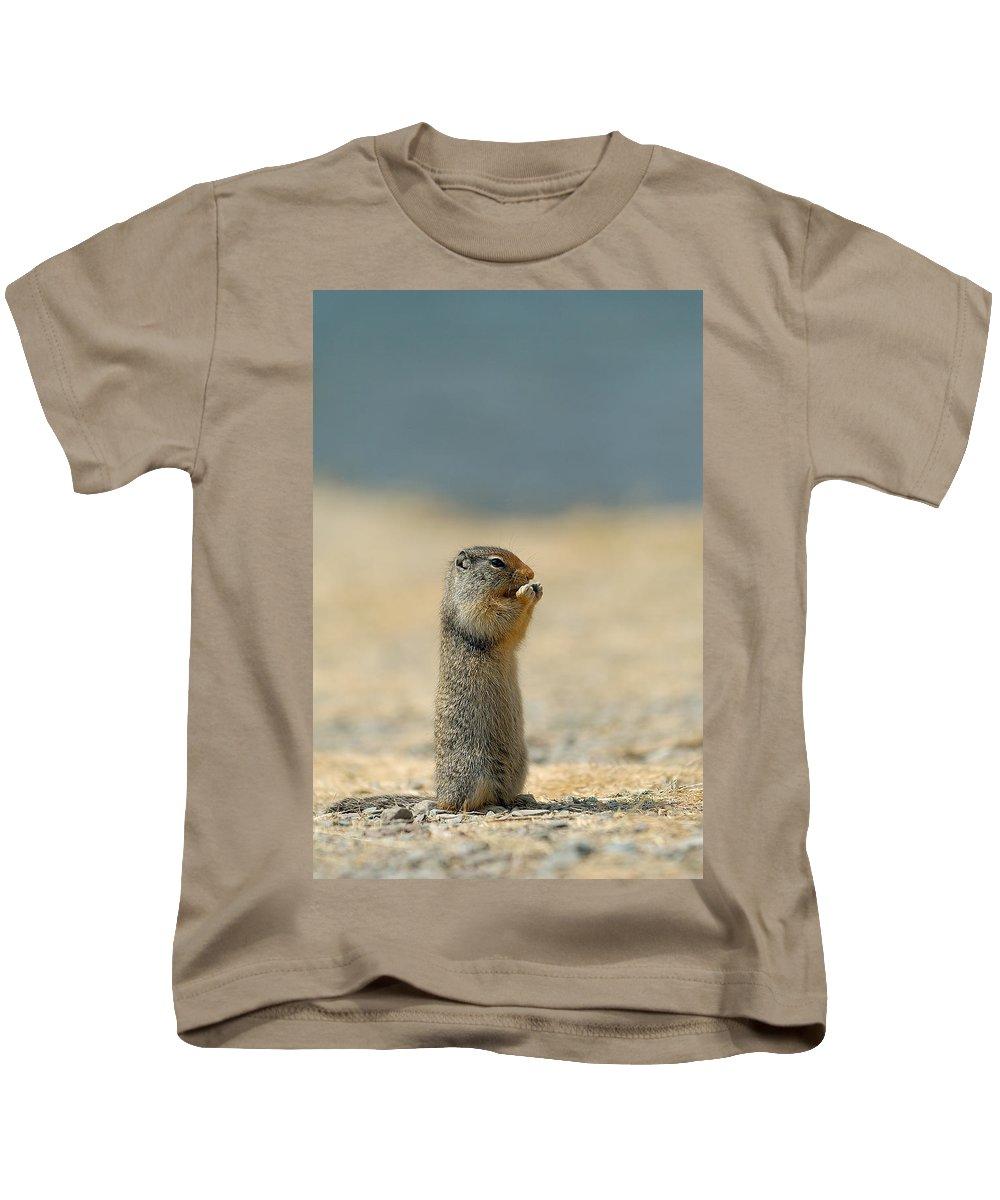 Prairie Dog Kids T-Shirt featuring the photograph Prairie Dog by Sebastian Musial